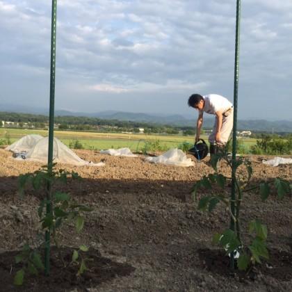 農園写真1